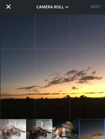 "The edit screen shows a grid that helps with making sure the horizon is level, or arranging the image according to the ""rule of thirds""."